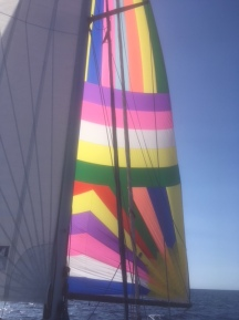 Spinnaker en route to Canaries