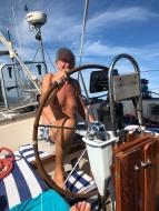 tanned skipper