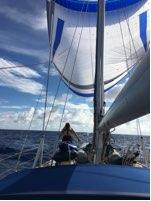 Parasailor up, mid Atlantic 25 April