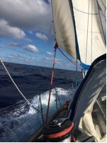 Last week before the doldrums, en route to Azores